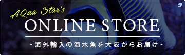 AQuaStar ONLINE STORE オンラインストア 海外輸入の海水魚を大阪からお届け