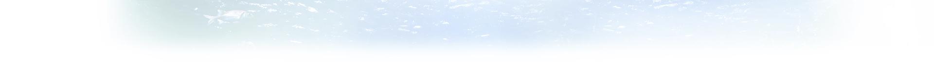 AQua Starロゴ画像背景