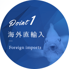 point01 海外直輸入 Foreign imports