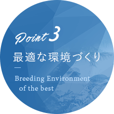 point03 最適な環境づくり Breeding Enviroment